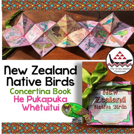 Concertina Book - New Zealand Native Birds