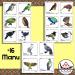 New Zealand Native Birds concertina book