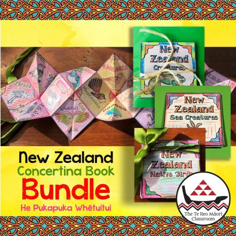 Concertina Book Bundle