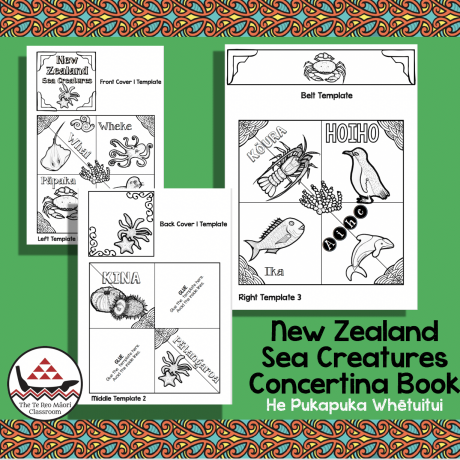 NZ Sea Creatures