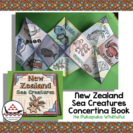 Concertina Book – New Zealand Sea Creatures