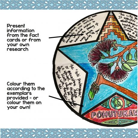 Matariki Star Mini Collaborative Poster Exemplar