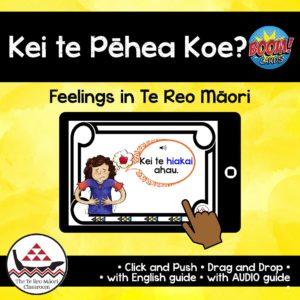 Feelings in Te Reo Māori Boom Cards